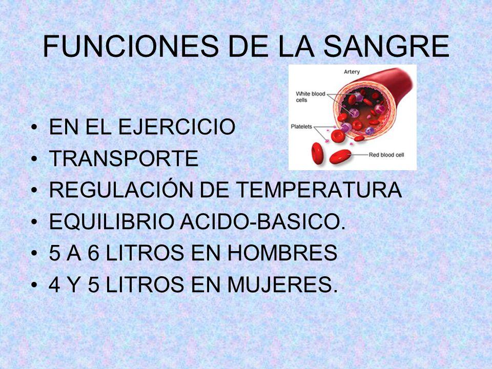 FUNCIONES DE LA SANGRE EN EL EJERCICIO TRANSPORTE REGULACIÓN DE TEMPERATURA EQUILIBRIO ACIDO-BASICO. 5 A 6 LITROS EN HOMBRES 4 Y 5 LITROS EN MUJERES.