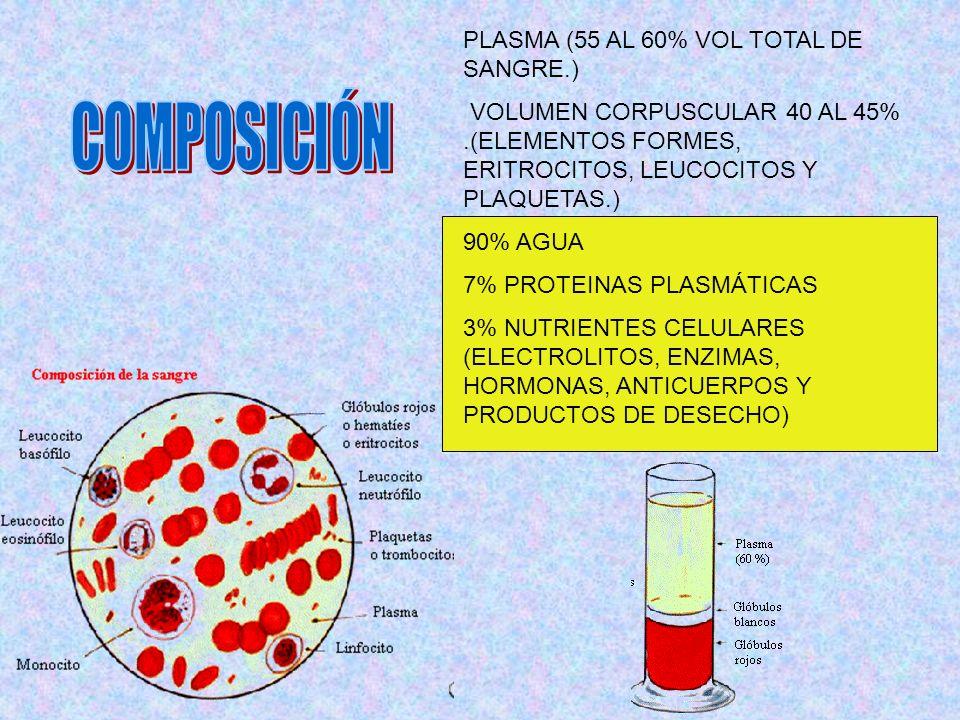 PLASMA (55 AL 60% VOL TOTAL DE SANGRE.) VOLUMEN CORPUSCULAR 40 AL 45%.(ELEMENTOS FORMES, ERITROCITOS, LEUCOCITOS Y PLAQUETAS.) 90% AGUA 7% PROTEINAS P