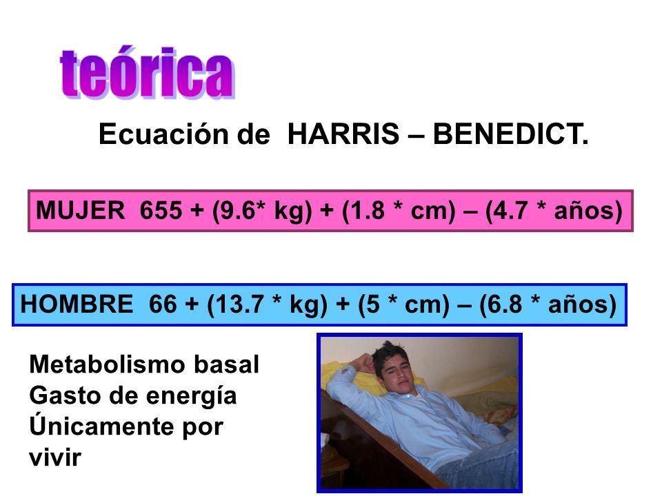 EC.HARRIS – BENEDICT.