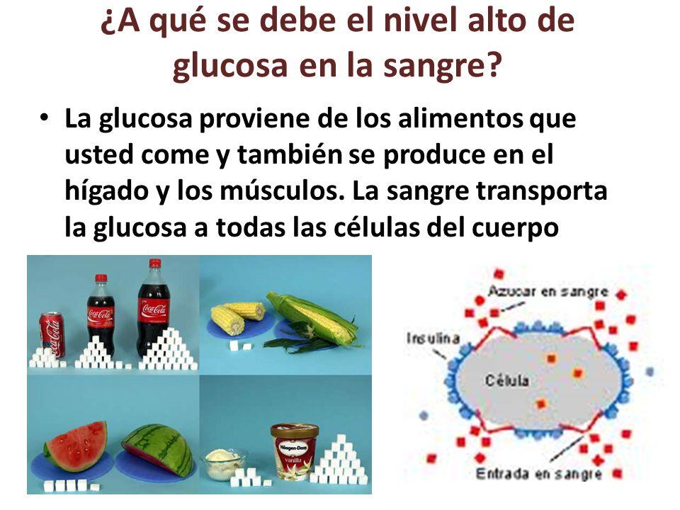 ¿A qué se debe el nivel alto de glucosa en la sangre.
