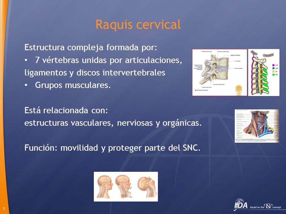 2 Raquis cervical Estructura compleja formada por: 7 vértebras unidas por articulaciones, ligamentos y discos intervertebrales Grupos musculares. Está