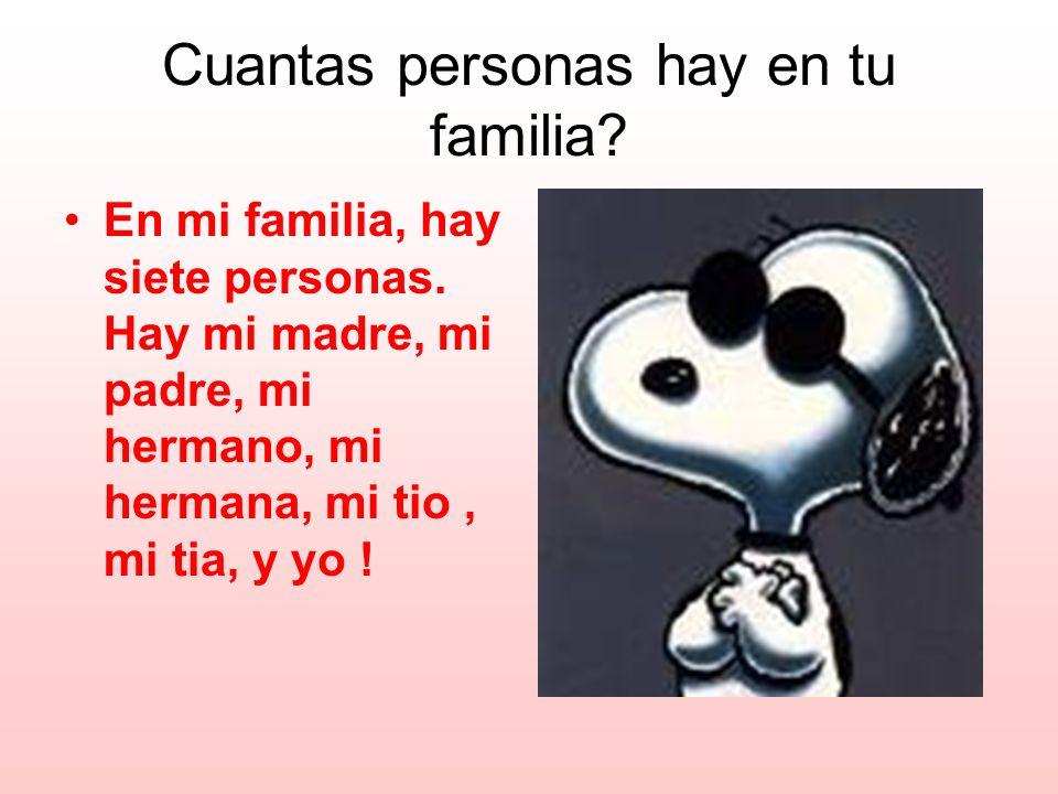 Cuantas personas hay en tu familia? En mi familia, hay siete personas. Hay mi madre, mi padre, mi hermano, mi hermana, mi tio, mi tia, y yo !