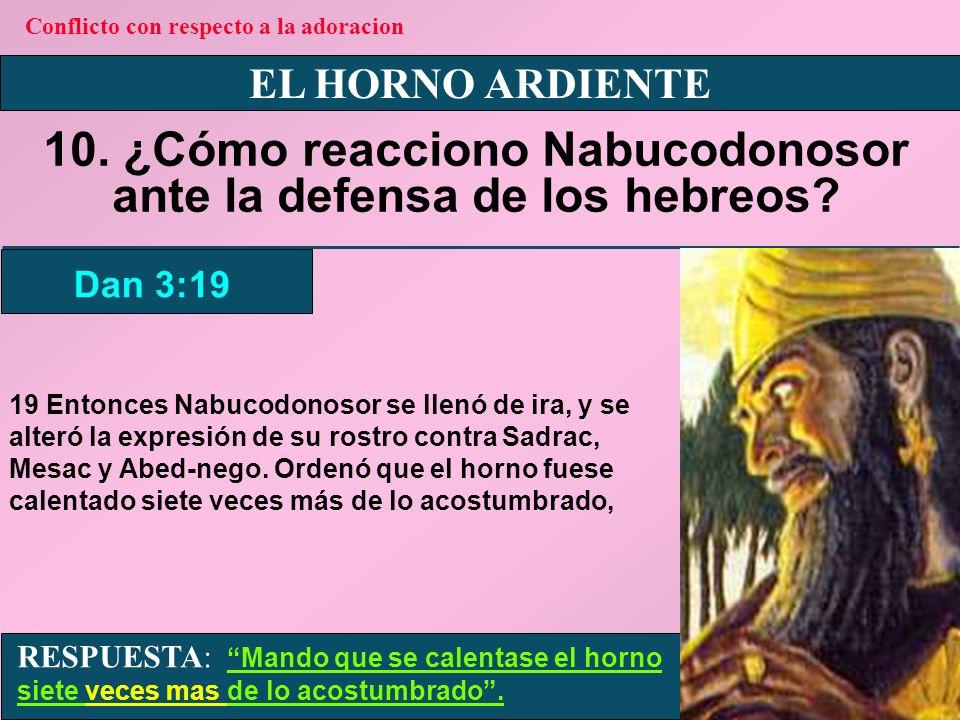 EL HORNO ARDIENTE 11.