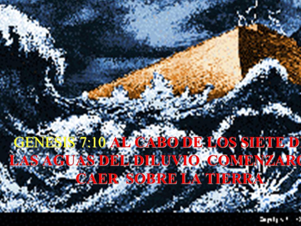 GENESIS 7:10 AL CABO DE LOS SIETE DIAS, LAS AGUAS DEL DILUVIO COMENZARON A CAER SOBRE LA TIERRA.
