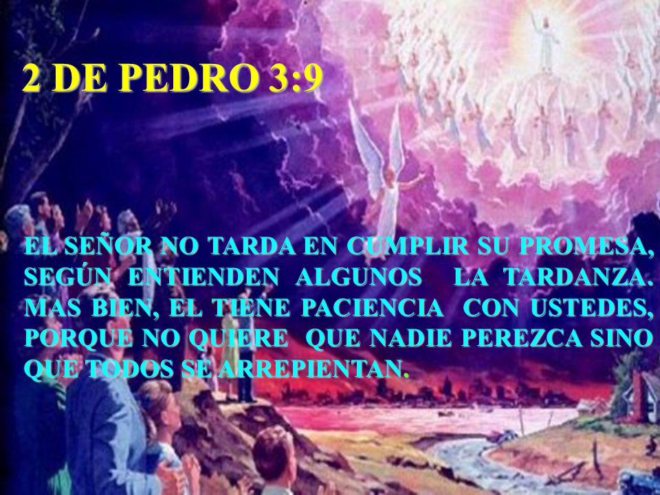 2 DE PEDRO 3:9 EL SEÑOR NO TARDA EN CUMPLIR SU PROMESA, SEGÚN ENTIENDEN ALGUNOS LA TARDANZA. MAS BIEN, EL TIENE PACIENCIA CON USTEDES, PORQUE NO QUIER