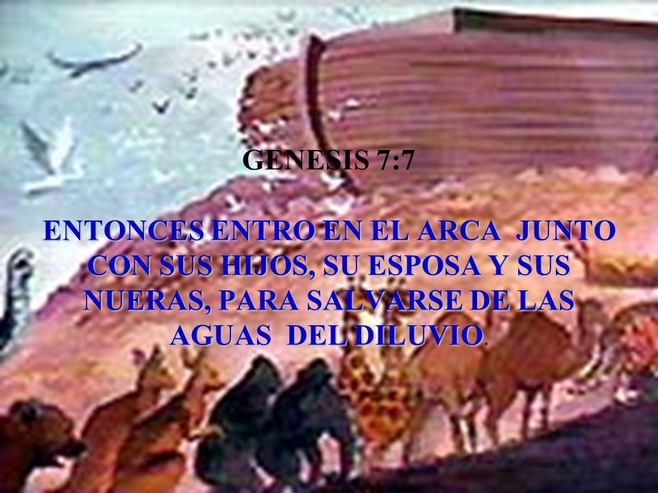 ENTONCES ENTRO EN EL ARCA JUNTO CON SUS HIJOS, SU ESPOSA Y SUS NUERAS, PARA SALVARSE DE LAS AGUAS DEL DILUVIO GENESIS 7:7 ENTONCES ENTRO EN EL ARCA JU