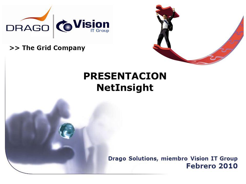 >> The Grid Company PRESENTACION NetInsight Drago Solutions, miembro Vision IT Group Febrero 2010