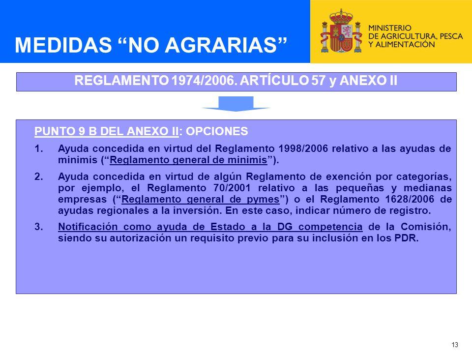 13 MEDIDAS NO AGRARIAS REGLAMENTO 1974/2006. ARTÍCULO 57 y ANEXO II PUNTO 9 B DEL ANEXO II: OPCIONES 1.Ayuda concedida en virtud del Reglamento 1998/2