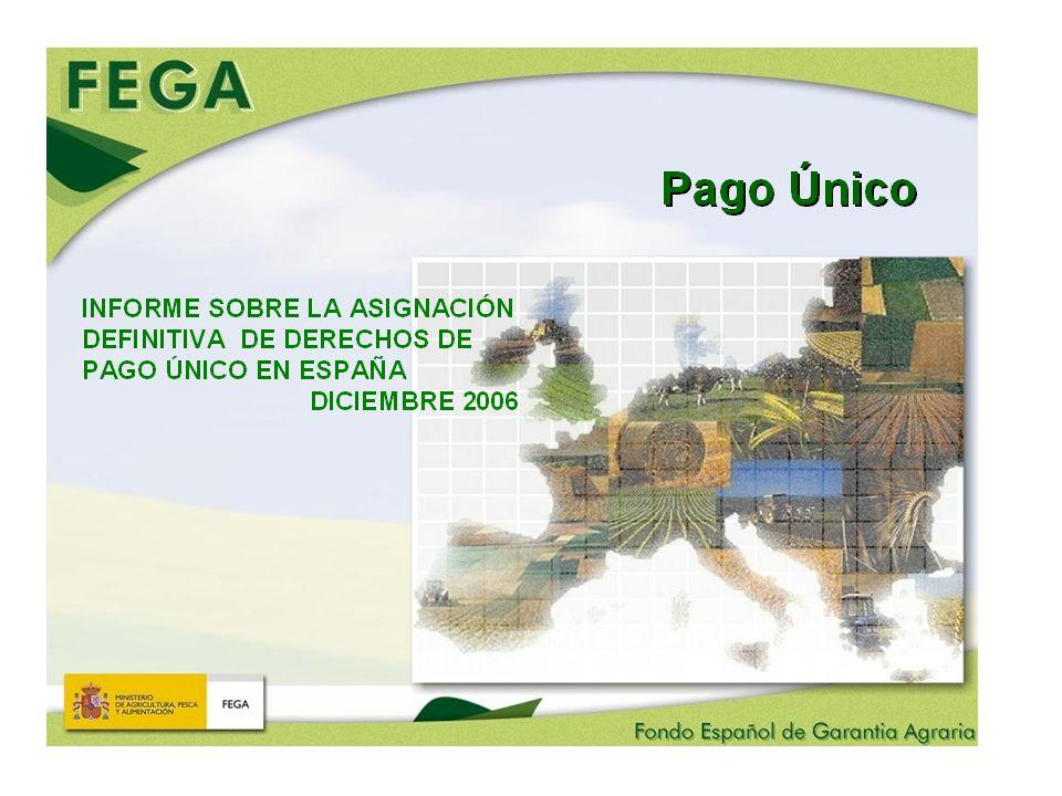 COMPARACION DE LOS IMPORTES DE LOS DERECHOS DE PAGO UNICO EN ESPAÑA CON EL ANEXO VIII DEL REGLAMENTO 1782/2003 IMPORTE ANEXO VIII Acoplado + Desacoplado (a) Importe Base Acoplado + Desacoplado (b) AJUSTE (a-b) IMPORTE ANEXO VIII (desacoplado) (A) Importe Desacop.