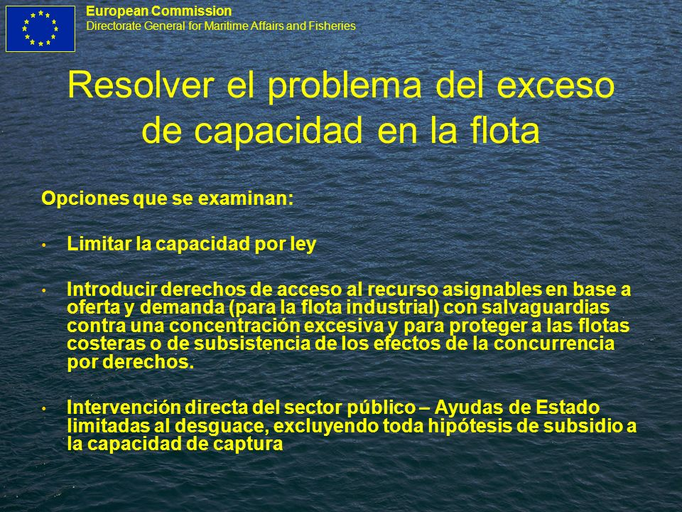 European Commission Directorate General for Maritime Affairs and Fisheries Resolver el problema del exceso de capacidad en la flota Opciones que se ex