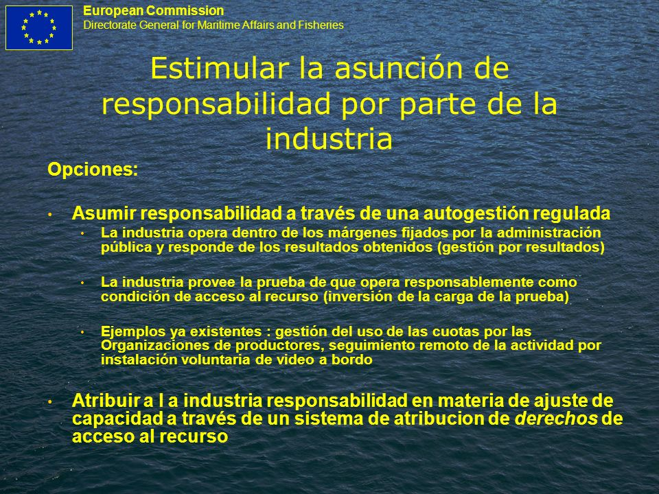 European Commission Directorate General for Maritime Affairs and Fisheries Estimular la asunción de responsabilidad por parte de la industria Opciones