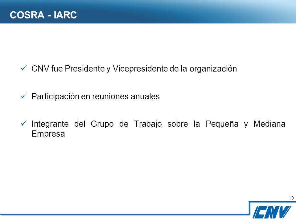 13 CNV fue Presidente y Vicepresidente de la organización Participación en reuniones anuales Integrante del Grupo de Trabajo sobre la Pequeña y Mediana Empresa COSRA - IARC