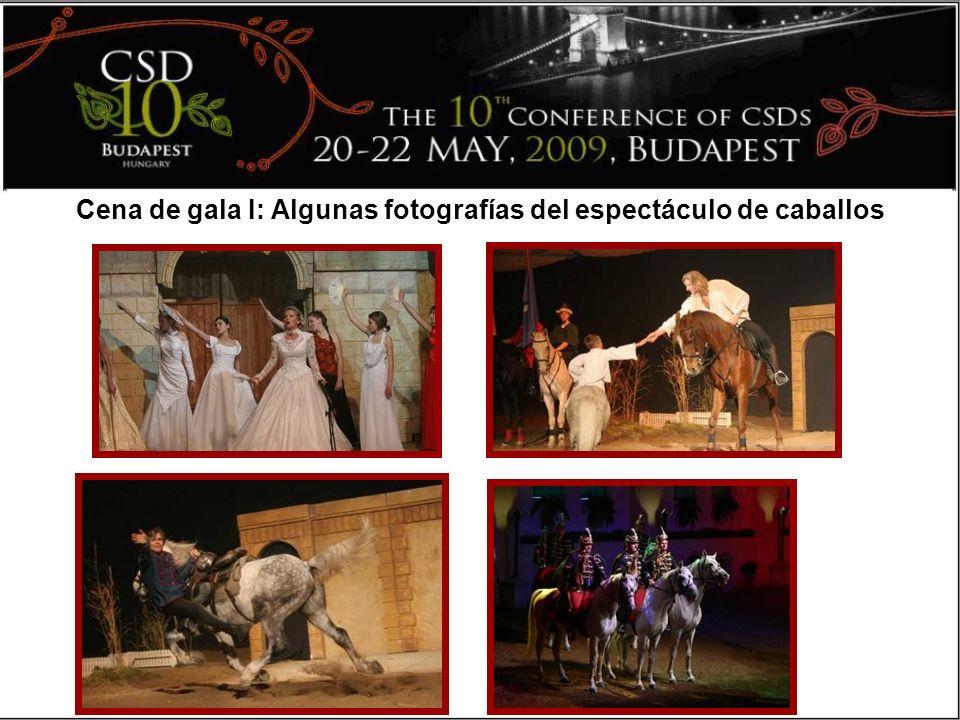 Cena de gala I: Algunas fotografías del espectáculo de caballos
