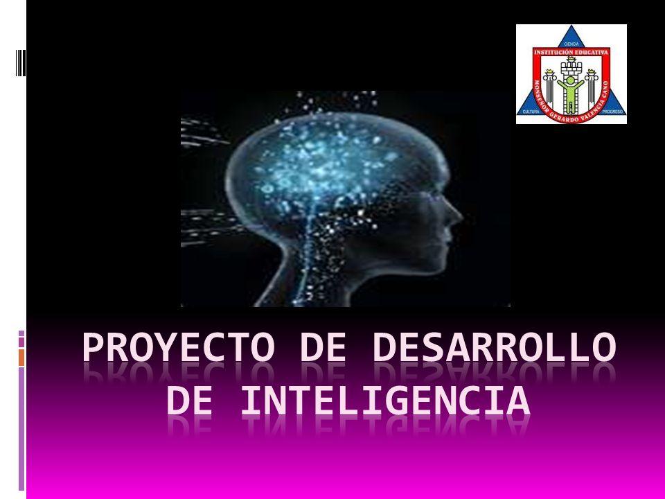 - Cálculo mental y análisis de situaciones problémicas (matemáticas y lógicas) en forma grupal.