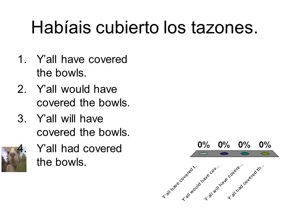 Habíais cubierto los tazones. 1.Yall have covered the bowls. 2.Yall would have covered the bowls. 3.Yall will have covered the bowls. 4.Yall had cover