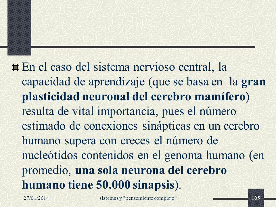 En el caso del sistema nervioso central, la capacidad de aprendizaje (que se basa en la gran plasticidad neuronal del cerebro mamífero) resulta de vit