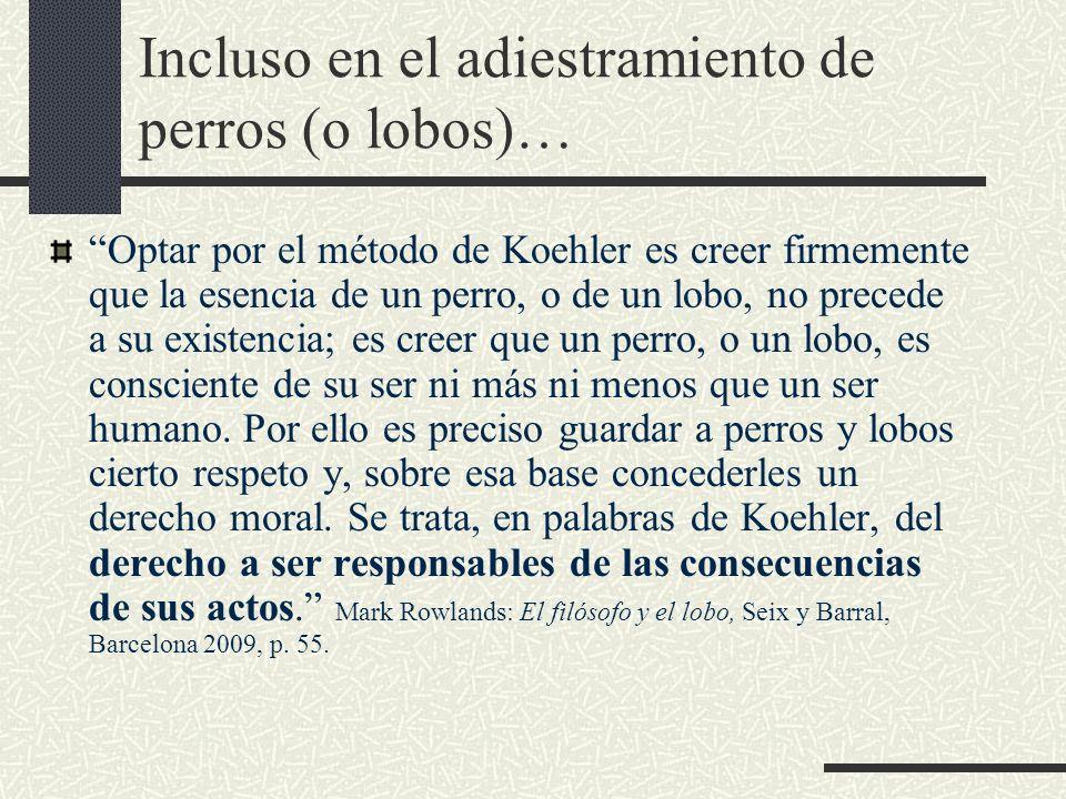Incluso en el adiestramiento de perros (o lobos)… Optar por el método de Koehler es creer firmemente que la esencia de un perro, o de un lobo, no prec