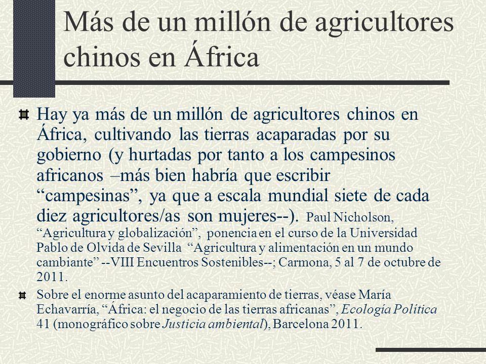 Más de un millón de agricultores chinos en África Hay ya más de un millón de agricultores chinos en África, cultivando las tierras acaparadas por su g