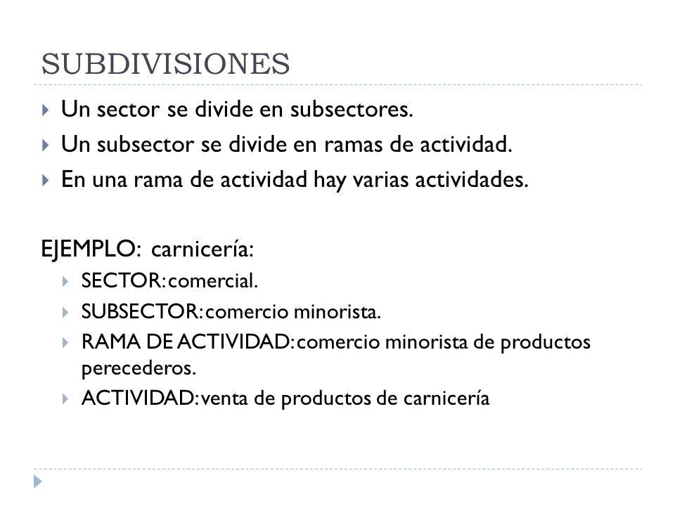 SUBDIVISIONES Un sector se divide en subsectores. Un subsector se divide en ramas de actividad. En una rama de actividad hay varias actividades. EJEMP