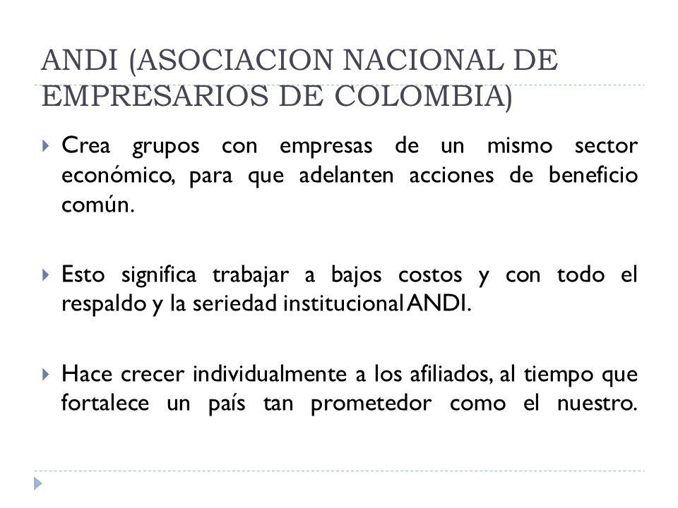 ANDI (ASOCIACION NACIONAL DE EMPRESARIOS DE COLOMBIA) Crea grupos con empresas de un mismo sector económico, para que adelanten acciones de beneficio