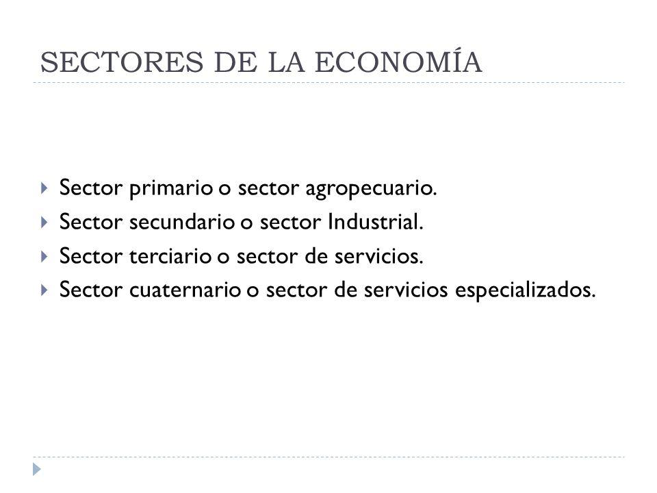 SECTORES DE LA ECONOMÍA Sector primario o sector agropecuario. Sector secundario o sector Industrial. Sector terciario o sector de servicios. Sector c