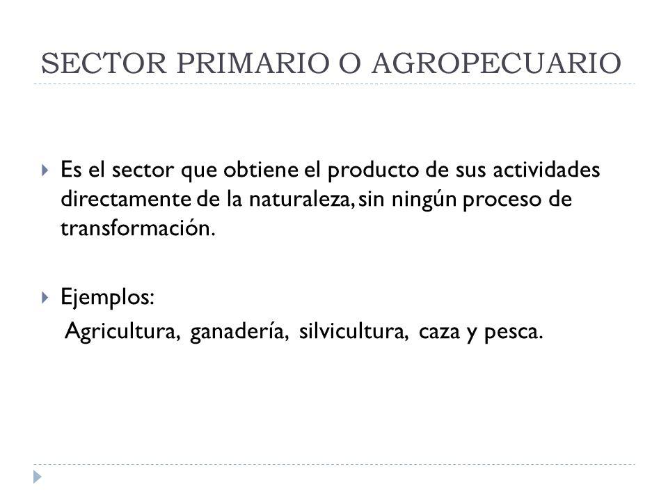 SECTOR PRIMARIO O AGROPECUARIO Es el sector que obtiene el producto de sus actividades directamente de la naturaleza, sin ningún proceso de transforma