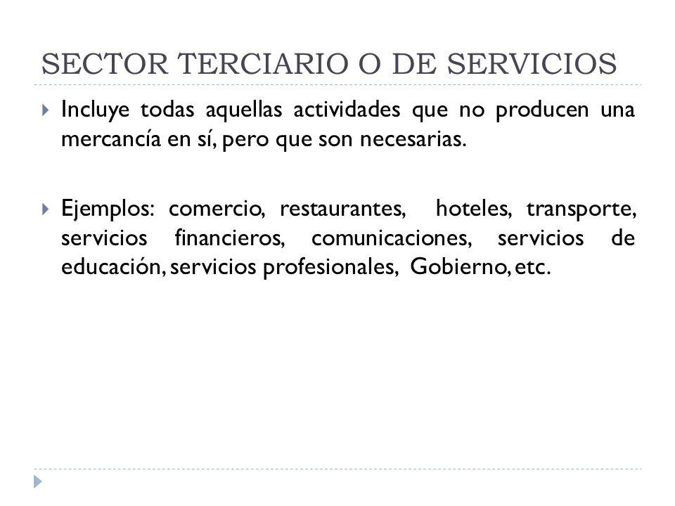 SECTOR TERCIARIO O DE SERVICIOS Incluye todas aquellas actividades que no producen una mercancía en sí, pero que son necesarias. Ejemplos: comercio, r