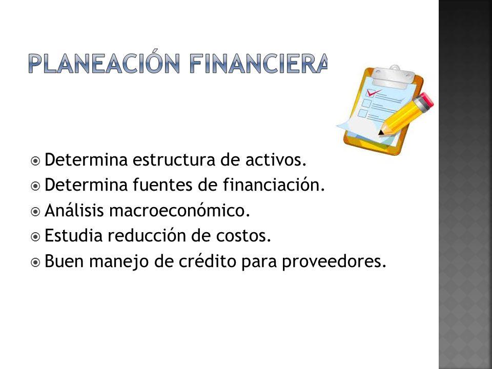 Determina estructura de activos. Determina fuentes de financiación. Análisis macroeconómico. Estudia reducción de costos. Buen manejo de crédito para