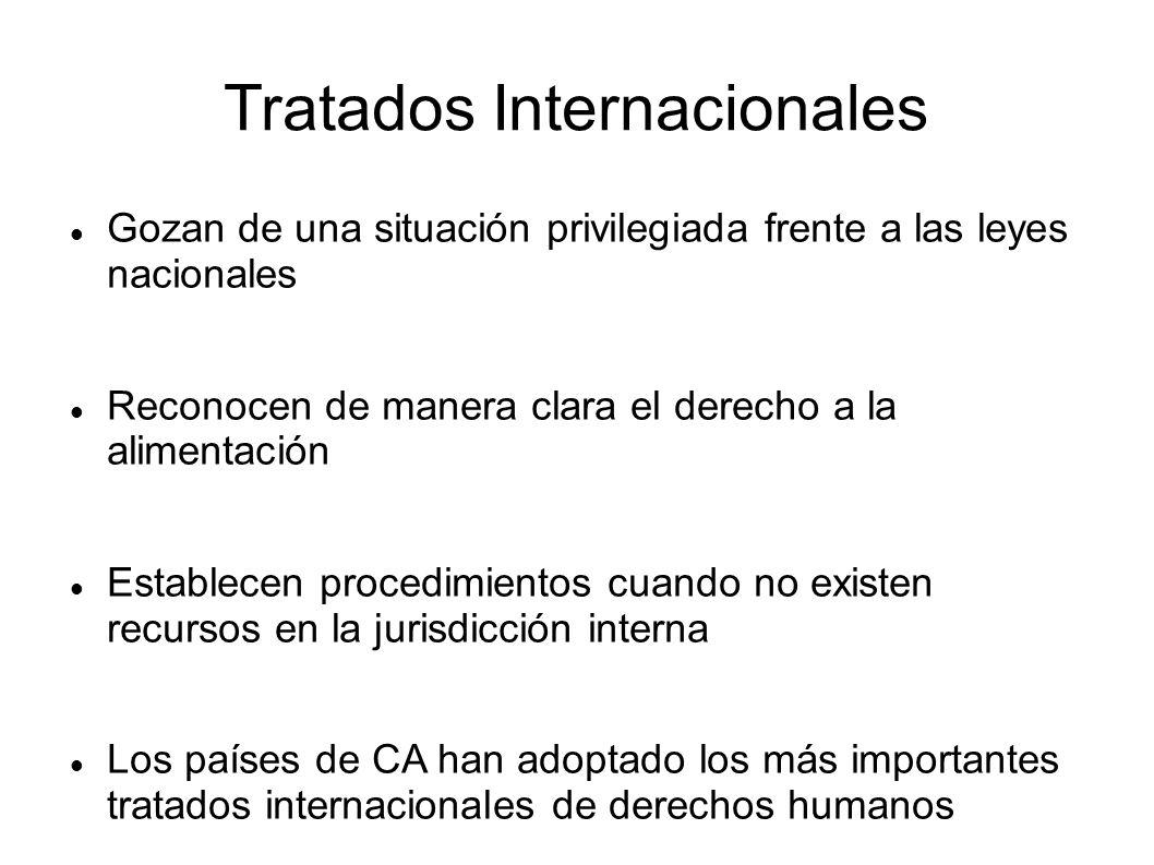 Tratados Internacionales Gozan de una situación privilegiada frente a las leyes nacionales Reconocen de manera clara el derecho a la alimentación Establecen procedimientos cuando no existen recursos en la jurisdicción interna Los países de CA han adoptado los más importantes tratados internacionales de derechos humanos