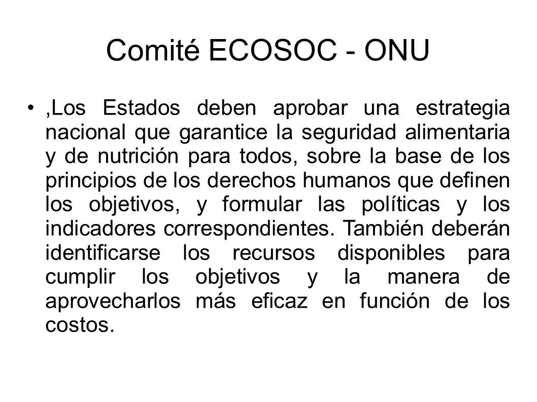 Comité ECOSOC - ONU,Los Estados deben aprobar una estrategia nacional que garantice la seguridad alimentaria y de nutrición para todos, sobre la base de los principios de los derechos humanos que definen los objetivos, y formular las políticas y los indicadores correspondientes.
