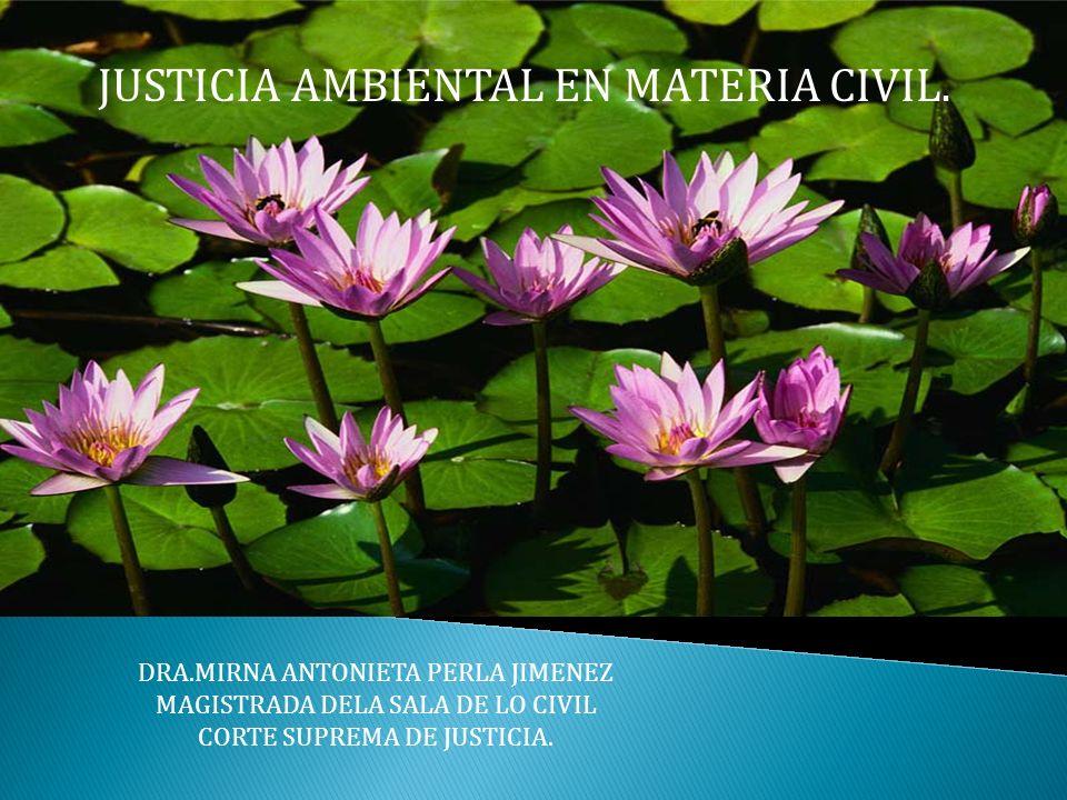 DRA.MIRNA ANTONIETA PERLA JIMENEZ MAGISTRADA DELA SALA DE LO CIVIL CORTE SUPREMA DE JUSTICIA. JUSTICIA AMBIENTAL EN MATERIA CIVIL.