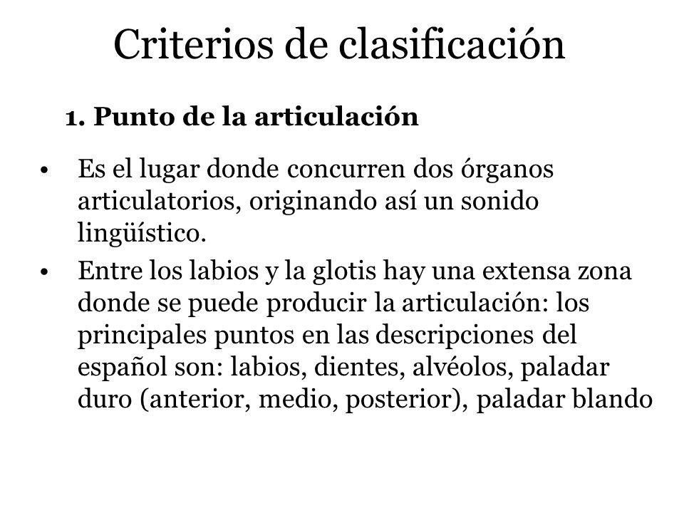 Criterios de clasificación 1. Punto de la articulación Es el lugar donde concurren dos órganos articulatorios, originando así un sonido lingüístico. E