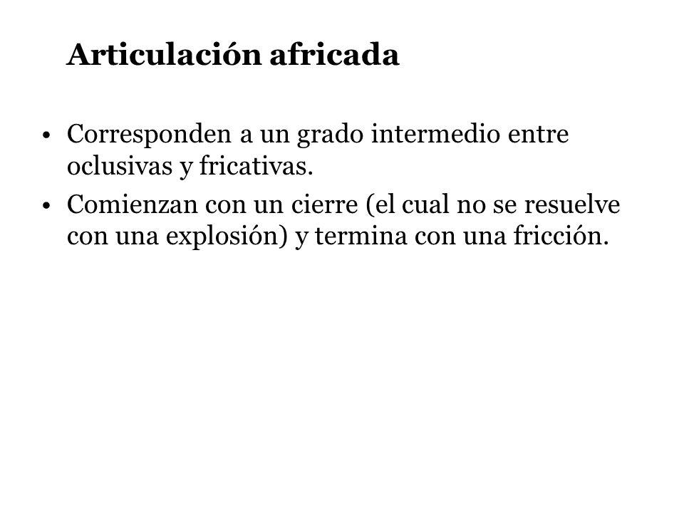 Articulación africada Corresponden a un grado intermedio entre oclusivas y fricativas. Comienzan con un cierre (el cual no se resuelve con una explosi