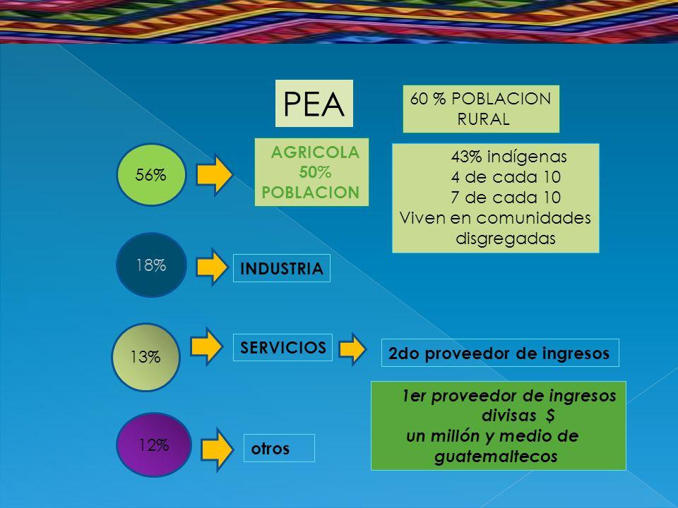 PEA 56% 18% 12% 13% AGRICOLA 50% POBLACION 60 % POBLACION RURAL 43% indígenas 4 de cada 10 7 de cada 10 Viven en comunidades disgregadas INDUSTRIA SERVICIOS 2do proveedor de ingresos 1er proveedor de ingresos divisas $ un millón y medio de guatemaltecos otros