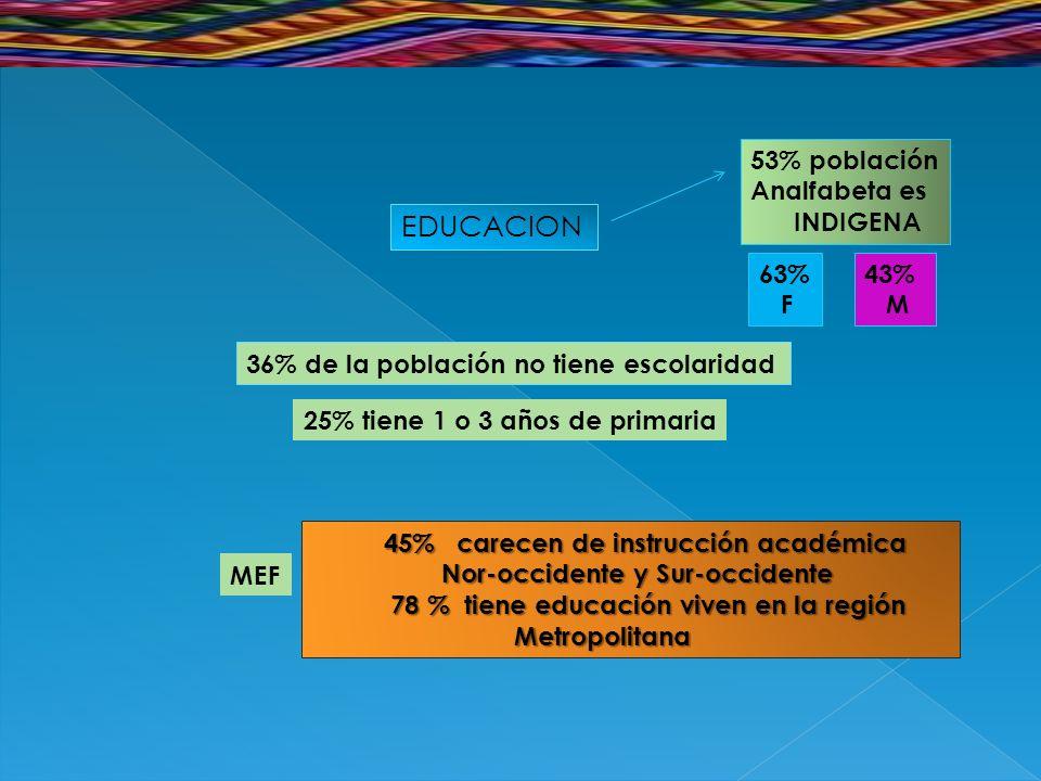 EDUCACION 36% de la población no tiene escolaridad 25% tiene 1 o 3 años de primaria 45% carecen de instrucción académica 45% carecen de instrucción académica Nor-occidente y Sur-occidente Nor-occidente y Sur-occidente 78 % tiene educación viven en la región 78 % tiene educación viven en la región Metropolitana Metropolitana MEF 53% población Analfabeta es INDIGENA 63% F 43% M