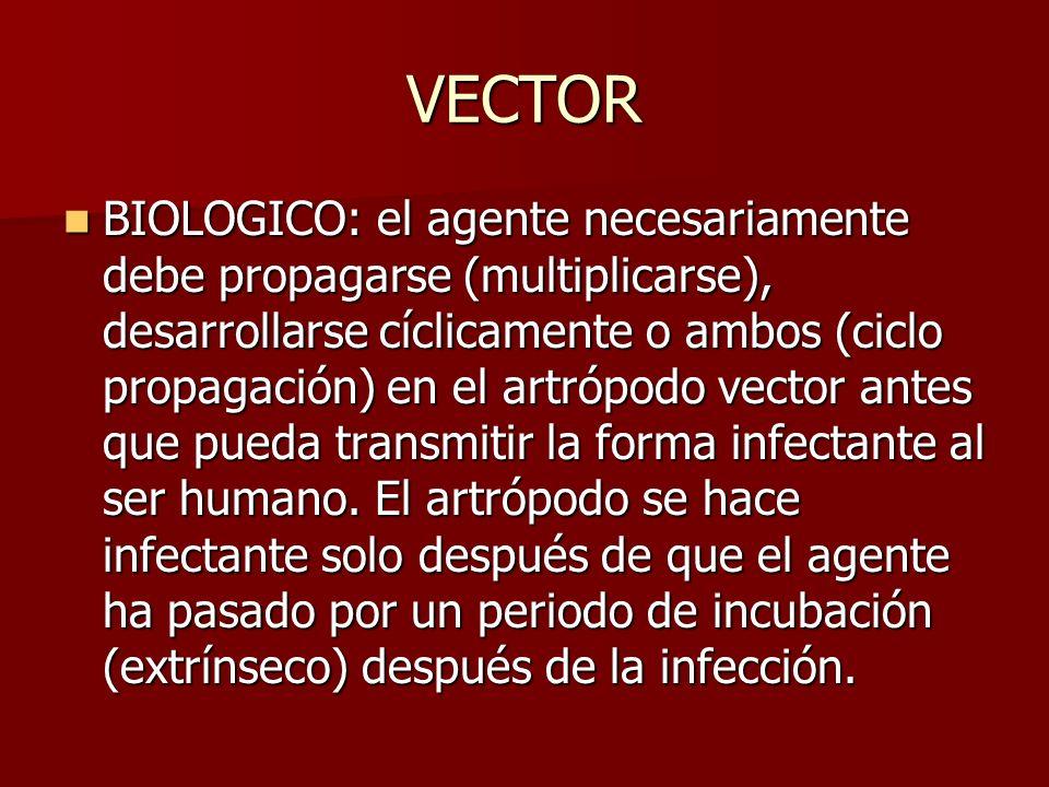 VECTOR BIOLOGICO: el agente necesariamente debe propagarse (multiplicarse), desarrollarse cíclicamente o ambos (ciclo propagación) en el artrópodo vec