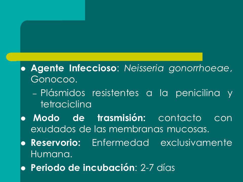 Agente Infeccioso : Neisseria gonorrhoeae, Gonocoo. – Plásmidos resistentes a la penicilina y tetraciclina Modo de trasmisión: contacto con exudados d