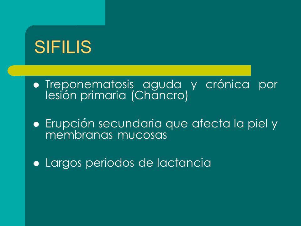 Treponematosis aguda y crónica por lesión primaria (Chancro) Erupción secundaria que afecta la piel y membranas mucosas Largos periodos de lactancia
