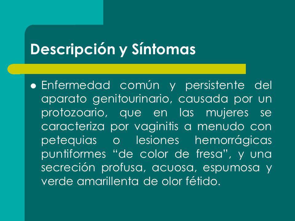 Descripción y Síntomas Enfermedad común y persistente del aparato genitourinario, causada por un protozoario, que en las mujeres se caracteriza por va