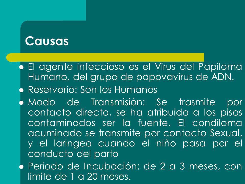 Causas El agente infeccioso es el Virus del Papiloma Humano, del grupo de papovavirus de ADN. Reservorio: Son los Humanos Modo de Transmisión: Se tras