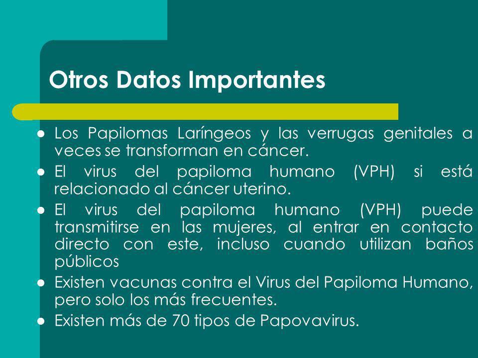 Otros Datos Importantes Los Papilomas Laríngeos y las verrugas genitales a veces se transforman en cáncer. El virus del papiloma humano (VPH) si está