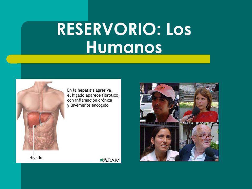 RESERVORIO: Los Humanos