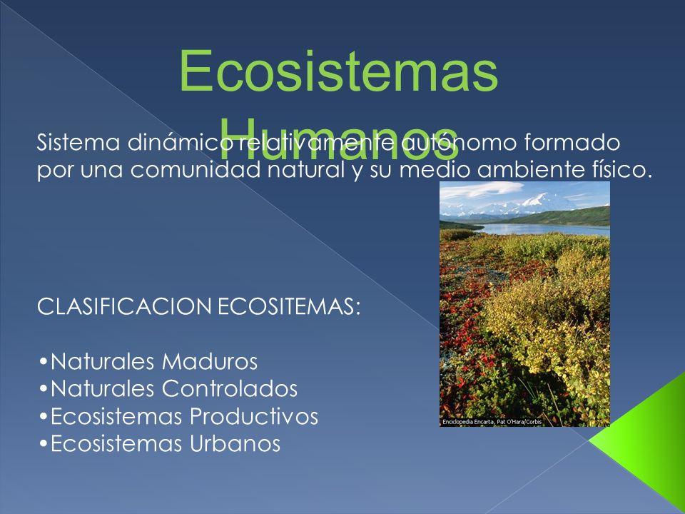 Ecosistemas Humanos Sistema dinámico relativamente autónomo formado por una comunidad natural y su medio ambiente físico. CLASIFICACION ECOSITEMAS: Na