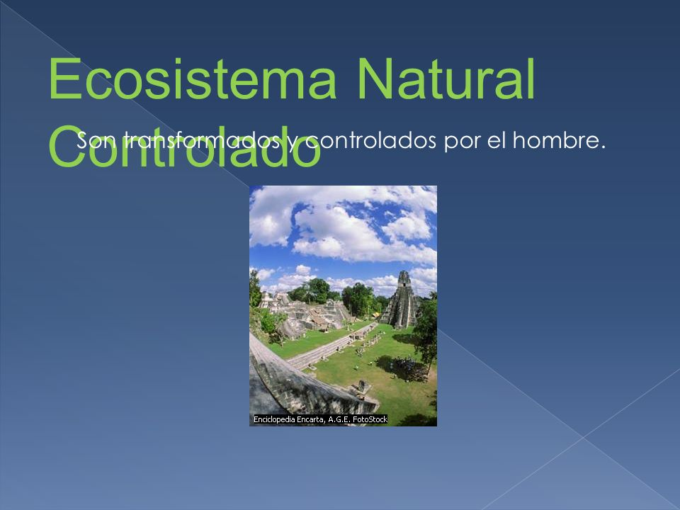 Ecosistema Natural Controlado Son transformados y controlados por el hombre.
