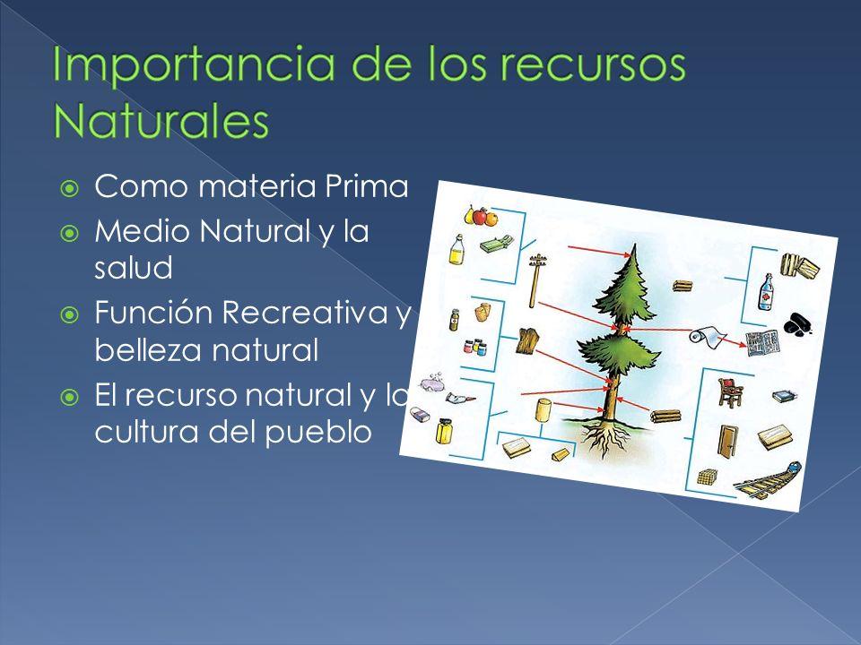 Como materia Prima Medio Natural y la salud Función Recreativa y belleza natural El recurso natural y la cultura del pueblo