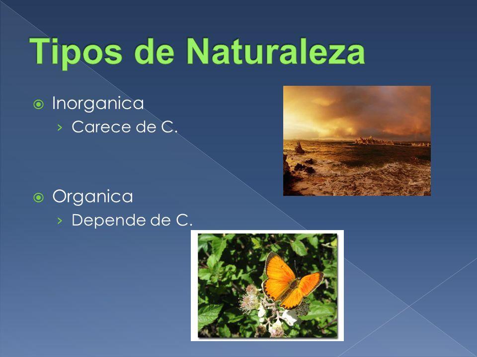 Inorganica Carece de C. Organica Depende de C.