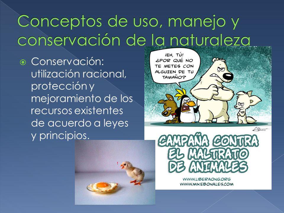 Conservación: utilización racional, protección y mejoramiento de los recursos existentes de acuerdo a leyes y principios.