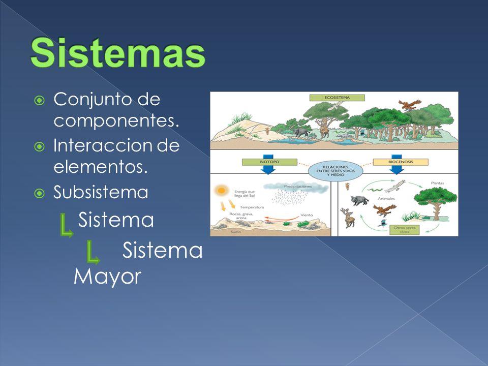 Conjunto de componentes. Interaccion de elementos. Subsistema Sistema Sistema Mayor