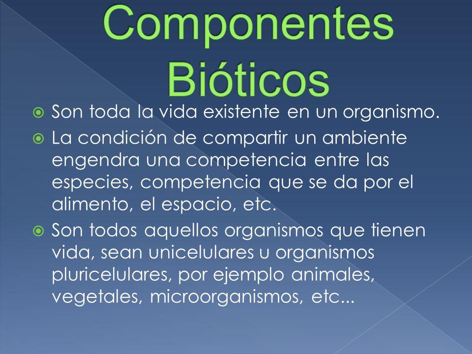 Son toda la vida existente en un organismo. La condición de compartir un ambiente engendra una competencia entre las especies, competencia que se da p