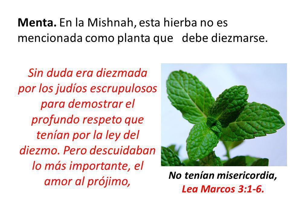 Menta. En la Mishnah, esta hierba no es mencionada como planta que debe diezmarse. Sin duda era diezmada por los judíos escrupulosos para demostrar el